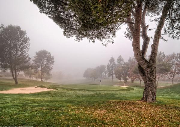 Blue Flag on Foggy 13