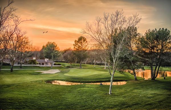 Golfer's Reverie