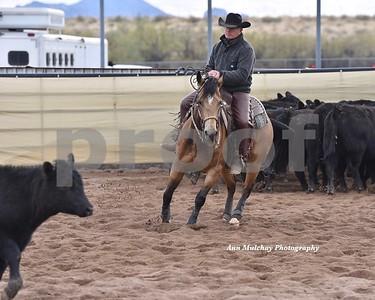 CCCHA Ranch Cutting 3/13/2021