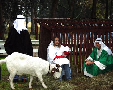 2006 Living Nativity
