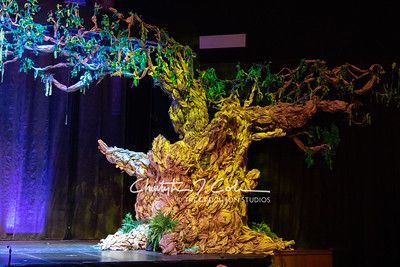 CCHS-Tuck-Everlasting-Sets-2259