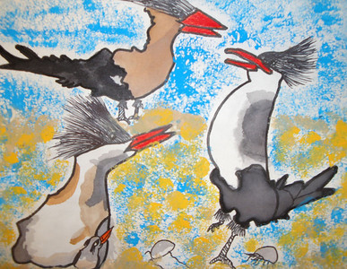 A Royal Tern Day by Mallory Keehn Gilmore Elementary School