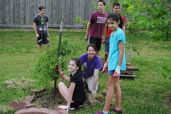 Hyde Elementary Garden Revitalization