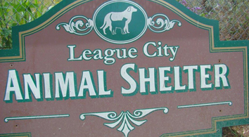 League City Animal Shelter