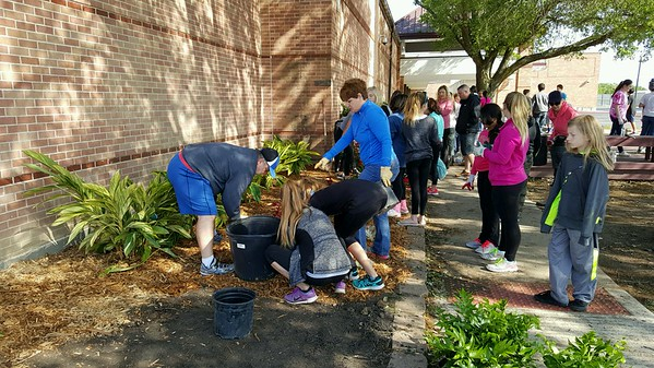 Seabrook Int. Beautification Day