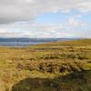 peat bog with peat cutting Elgol - 12