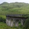 Glenfinnan viaduct (west hillside 13E) - 01