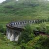 Glenfinnan viaduct (west hillside 13E) - 11