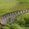 Glenfinnan viaduct (west hillside 13E) - 09