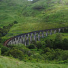 Glenfinnan viaduct (west hillside 13E) - 05