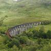 Glenfinnan viaduct (west hillside 13E) - 10