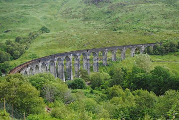 Glenfinnan viaduct (west hillside 13E) - 04