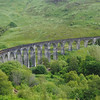 Glenfinnan viaduct (west hillside 13E) - 04