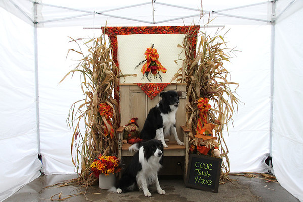 Rally/Obedience Trials-Photo Booth 9-2013