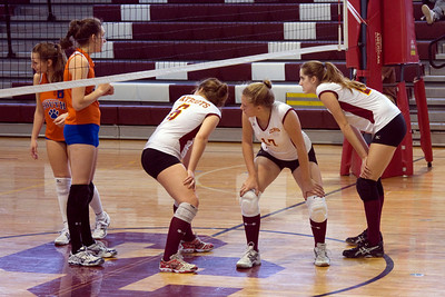 Volley Ball 2010