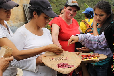 Young women peasant farmers swap seeds