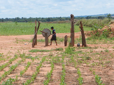 Rural communities living with industrial soy production