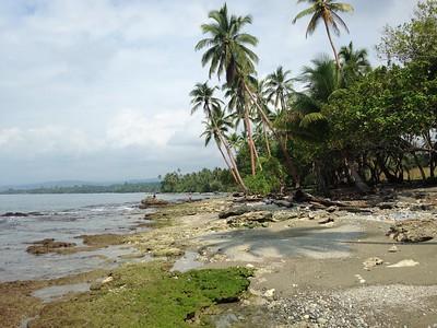 Solomon Islands, CCRI