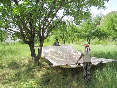 CCRI in Tajikistan