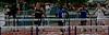 Boys 110 Meter Hurdles Finals-6400