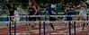 Boys 110 Meter Hurdles Finals-6402