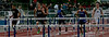 Boys 110 Meter Hurdles Finals-6401