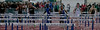 Boys 110 Meter Hurdles Finals-6395