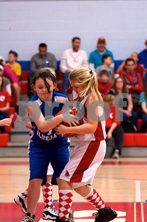 Cardinals Vrs Blue Jays 2012-13 4th Gr Girls Battle of Birds 2