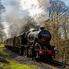 Springtime arrived on the ELR on Saturday 25th March 2017, as Stanier 8F makes her way through sunlight and shade at Summerseat with the 09.30 Bury to Rawtenstall service.