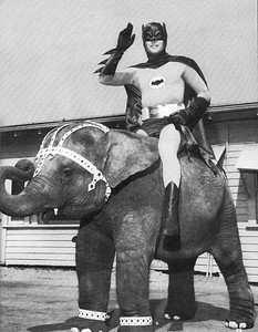 Batman - Elephant