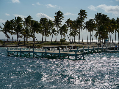 Pier and palm trees on the beach, Belize