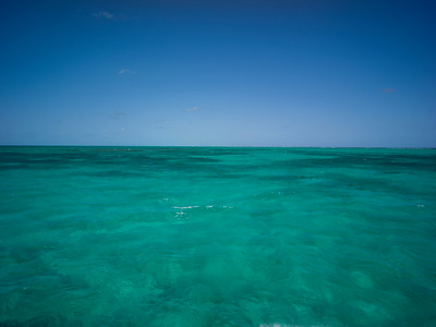 Caribbean Sea, Half Moon Caye, Lighthouse Reef Atoll, Belize