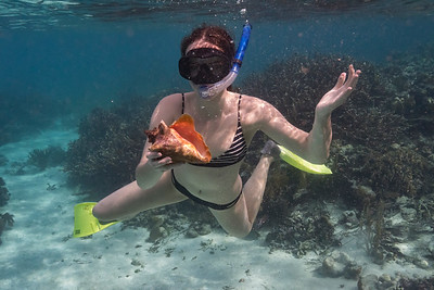 Woman snorkeling, Turneffe Atoll, Belize Barrier Reef, Belize