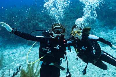 Scuba divers underwater, Three Amigos, Turneffe Atoll, Belize Barrier Reef, Belize