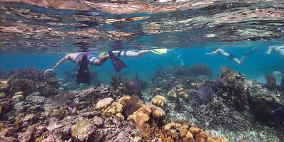 People snorkeling, Turneffe Atoll, Belize Barrier Reef, Belize