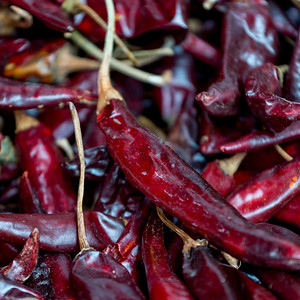 Close-up of dried red chili peppers, Centro, Dolores Hidalgo, Guanajuato, Mexico