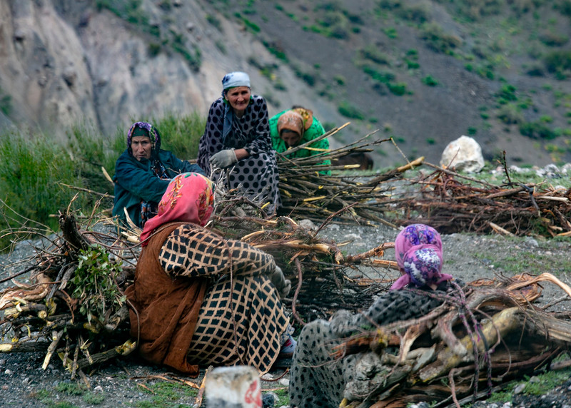 Village women gathering firewood