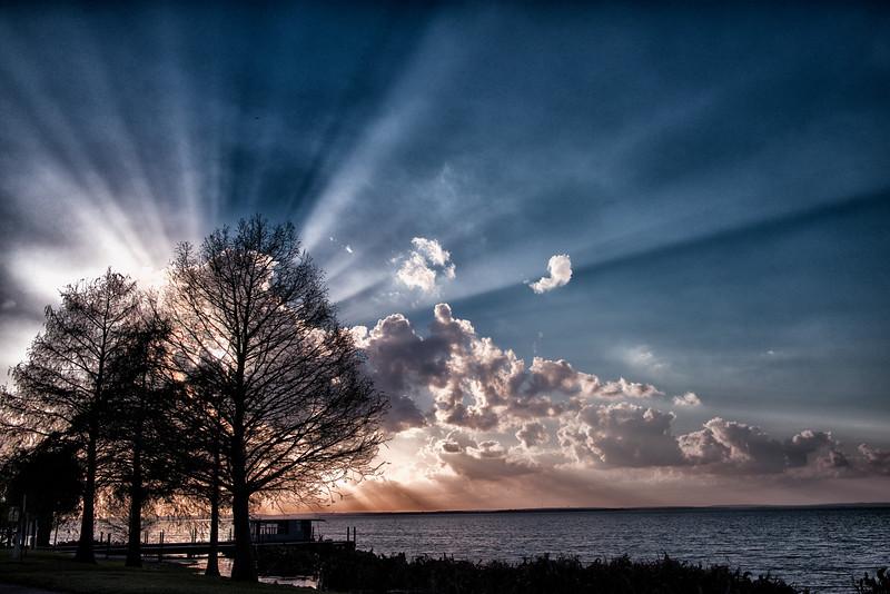 """ETC-3056  """"Fantastic Sunburst Through Trees"""""""