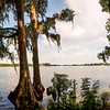"ETC-3374-WPP1640  ""A Walk by the Lake""  Pano"