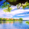 """ETC-3497-WPP1696 """"Branch of Learning  Pano1 """" Med  File 7514"""