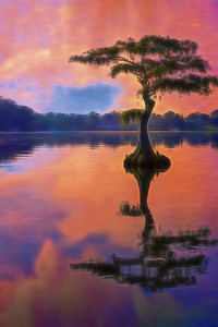 """ETC-3435-WPP1681  """"Hot Coral Cypress"""""""
