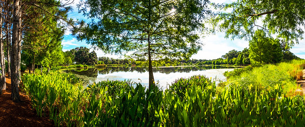 "ETC-3343  ""Oak Park Lake""  Pano"