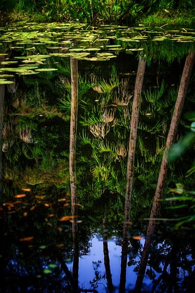 "ETC-3451-WPP1689  ""Deep Reflection"""