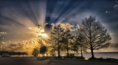 "ETC-3053  ""Golden Sunburst with Tree Silhouettes"""