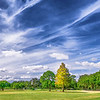 """ETC-3465-WPP1693 """"Winter Park Golf Course-Pano """"  Med file"""