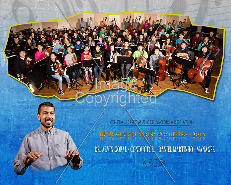 20x16 string orchestra