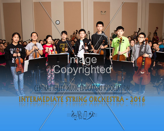 2016 Intermediate Strings