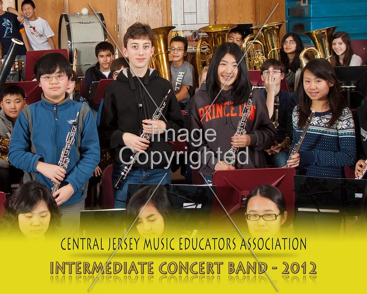 810--CNCRT BNDS--2012