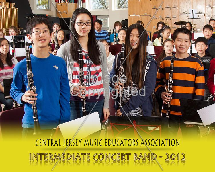 801--CNCRT BNDS--2012