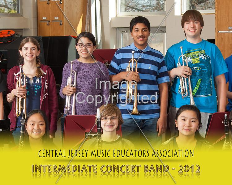 828--CNCRT BNDS--2012